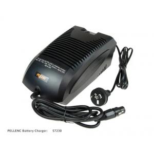 http://www.mowerpower.com.au/789-thickbox/pellenc-charger-22a.jpg